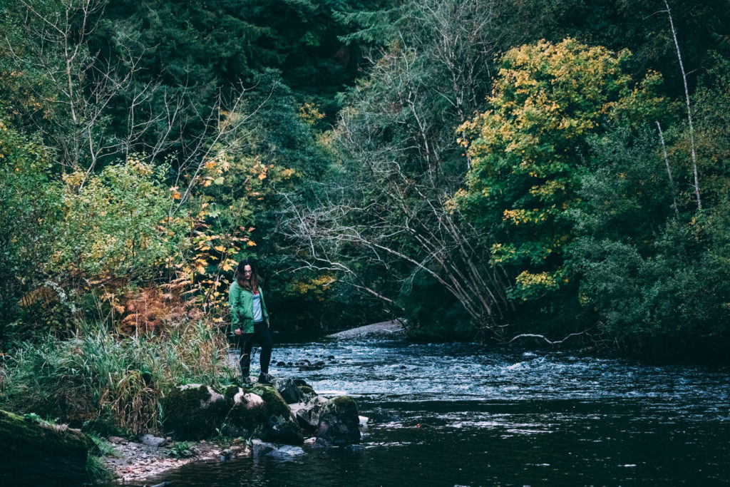 Avondale-Forest-Park-River-Wicklow